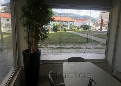 escritorio_triunfactos12