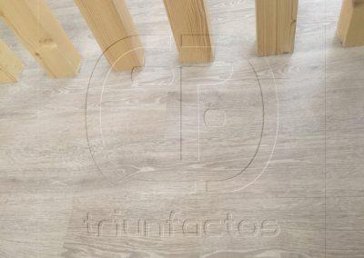escritorio_triunfactos26